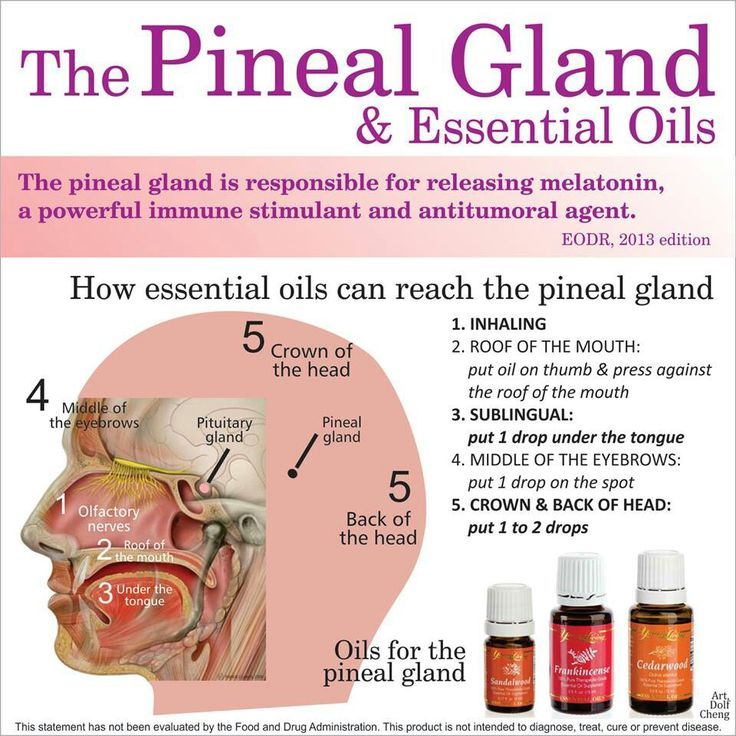 Treating The Pineal Gland With Essential Oils Waking Times
