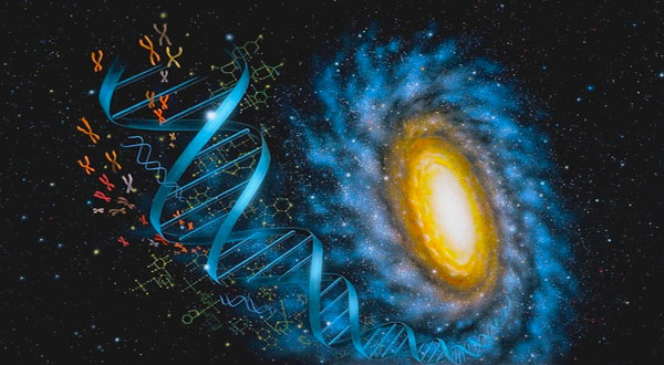 dna-universe
